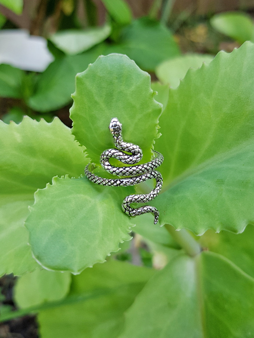 Silver Small Serpent Ring - Size 5