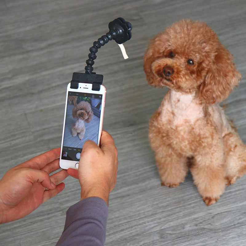 Hirundo Lovely Pet Selfie Stick