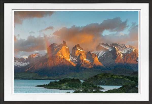 Patagonia Prints Prints for Conservation