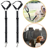 Safest Dog Car Harness UK