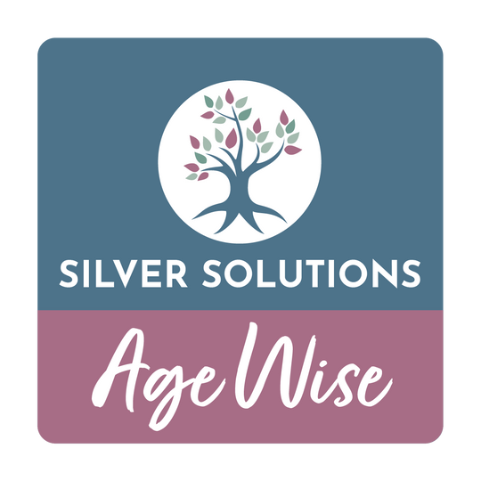 Silver Solutions Age Wise: The Interview with Scott Greenberg, CEO of ComForCare of Palm Beach and author of,