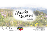 ABSAROKA MOUNTAINS - Greeting Card