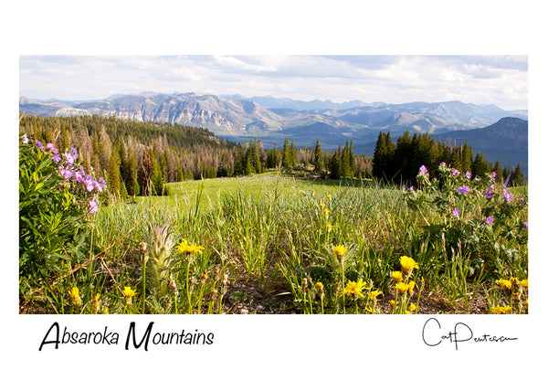 Greeting Card - ABSAROKA MOUNTAINS