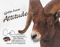GOTTA HAVE ATTITUDE - Note Cards