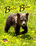 BABY BEAR - Note Cards