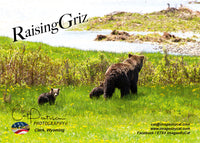 RAISING GRIZ  - Greeting Card