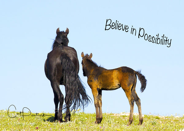 Believe in Possibility - Greeting Card