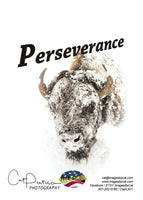 PERSEVERANCE - Greeting Card