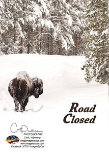 Greeting Card - ROAD CLOSED
