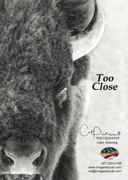 TOO CLOSE - Greeting Card