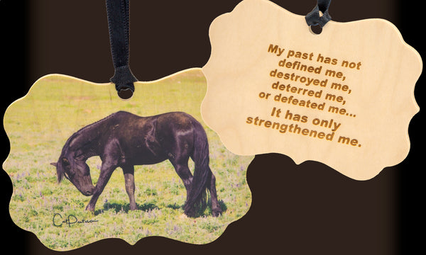 Strengthened Me - Wooden Ornament