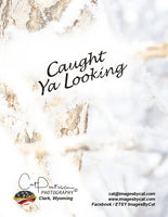 CAUGHT YA LOOKING - Note Cards
