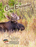 Note Cards - CLOSE ENCOUNTER