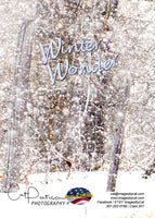 WINTER WONDER - Greeting Card
