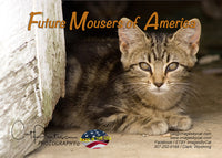 FUTURE MOUSERS OF AMERICA - Greeting Card