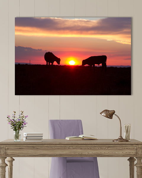 GRAZING SUNSET