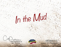 In the Mud - Note Cards