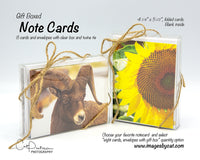 Note Cards - TIMES TWO