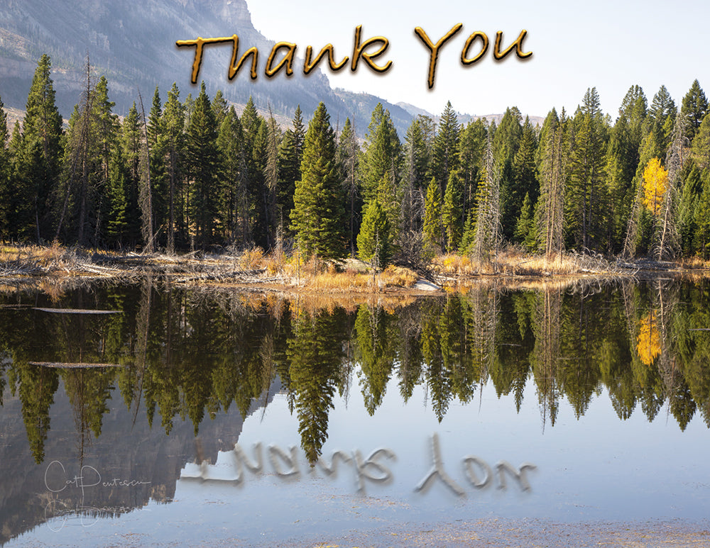 Note Cards - REFLECTING PEACE ~ Thank You Cards