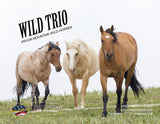Note Cards - WILD TRIO - Thank You Cards