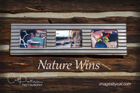 NATURE WINS - Metal framed in Metal