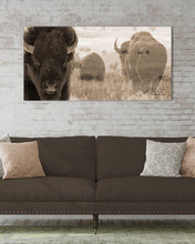 Load image into Gallery viewer, WHERE BUFFALO ROAM