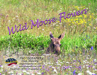 WILD MOOSE FLOWERS - Note Cards
