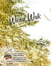 Load image into Gallery viewer, Note Cards - WINTER WALK (V)