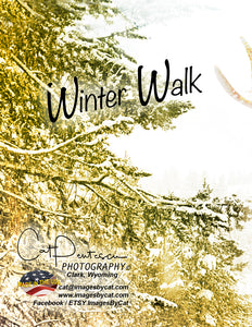 Note Cards - WINTER WALK (V)