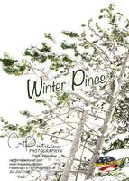 WINTER PINES - Greeting Card