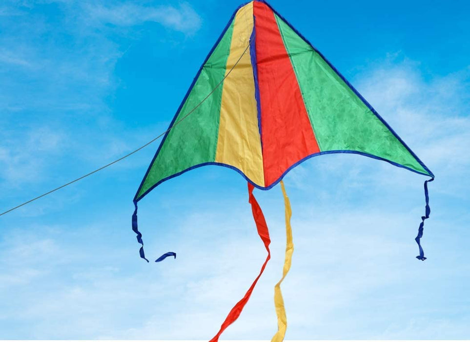 JA-RU Delta Kite Nylon Large in Bulk Kites for Kids (Pack of 2 Assorted) Easy to Assemble Glider , Easy to Fly & Launch. Family Outdoor Kids Games. Party Favors Gifts. 9877-2p