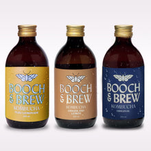 Kombucha Mixed Case - 12 Pack