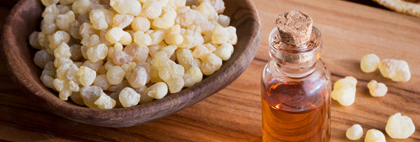 Why is Frankincense the 'KING OF ESSENTIAL OILS'?
