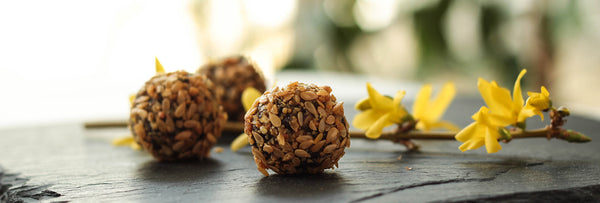 5 Minute Protein Peanut Butter Energy Bites