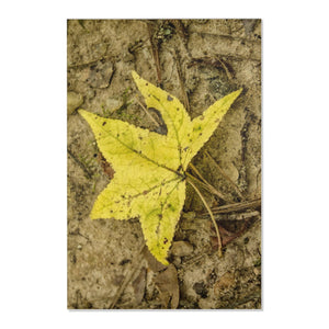 The Yellow Leaf Area Rugs