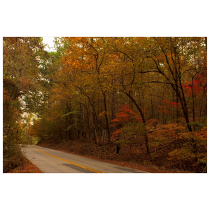 Fall on a County Road Posters