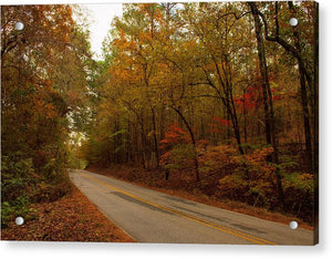 Fall On A County Road - Acrylic Print