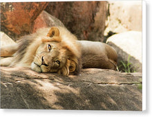 Load image into Gallery viewer, I'm Leo The Lion - Canvas Print
