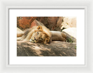 I'm Leo The Lion - Framed Print