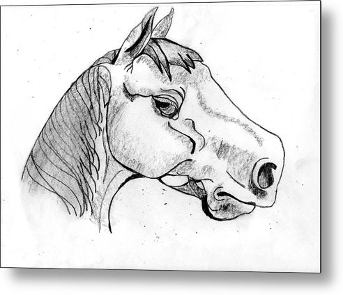 My Name Is Mr. Ed - Metal Print