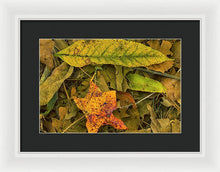 Load image into Gallery viewer, The Fall Abstract - Framed Print