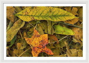The Fall Abstract - Framed Print