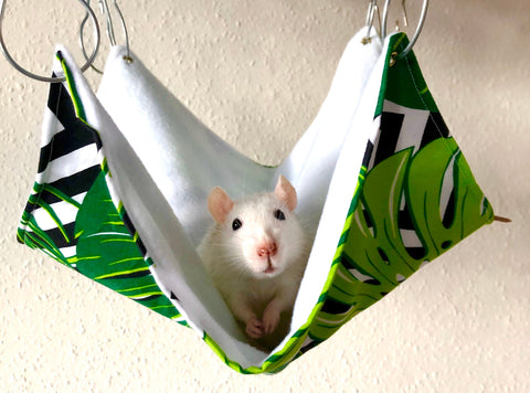 Monstera Rat Hammock