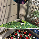 Monstera Rat Hammock Set