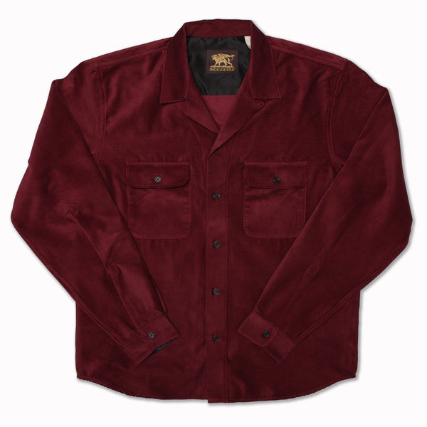 Willoughby in wine corduroy