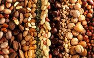 Nuts, Grains and Seeds