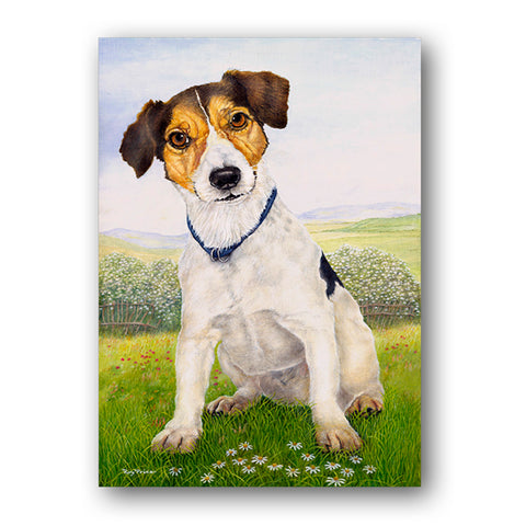 Jack Russell Terrier Greetings Card from Dormouse Cards