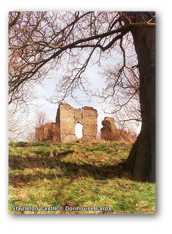 Stapleton Castle © Dormouse Cards