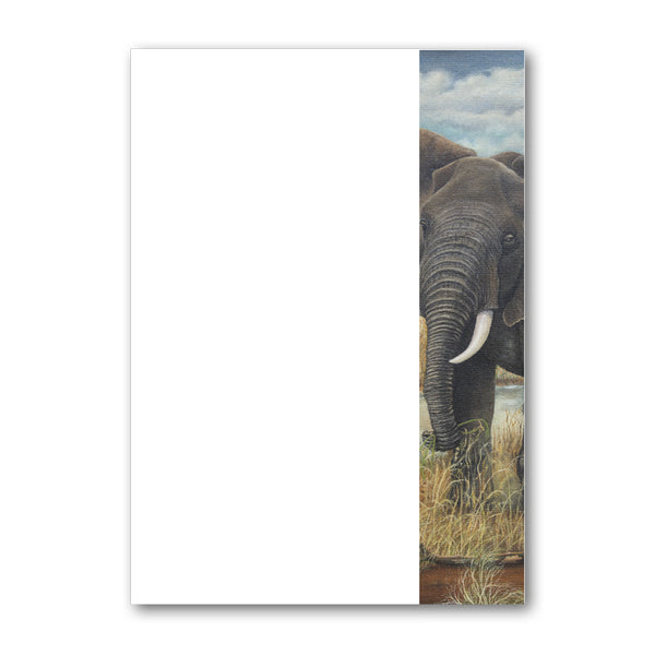 Pack of 6 Elephant Notepaper plain sheets and envelopes from Dormouse Cards