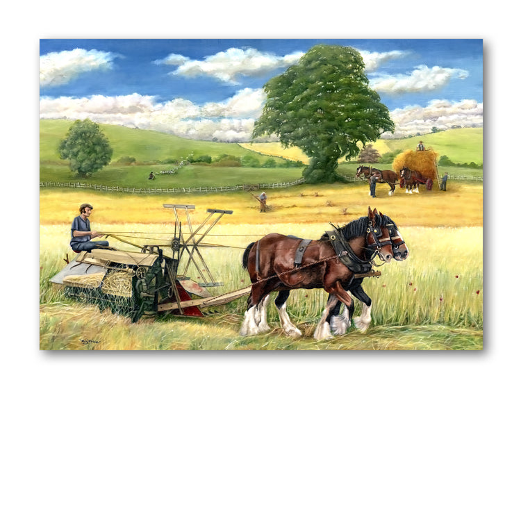 Shire Horses Harvesting Wheat Greetings Card from Dormouse Cards